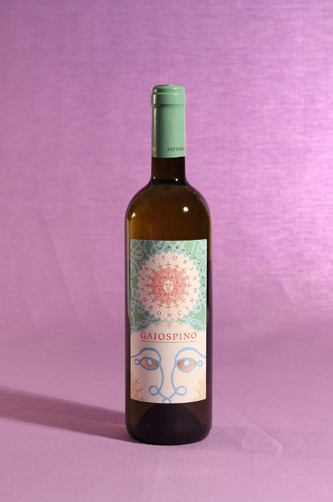 vino gaiospino 2013 da 750 millilitri dell'azienda agricola Fattoria Coroncino